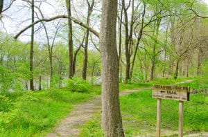 hike along the wabash and erie canal in delphi indiana