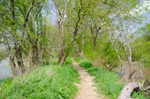 easy to hike trails in delphi indiana